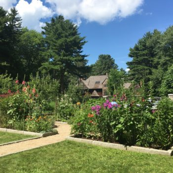 Garden Tour, Bar Harbor, 7/23/16