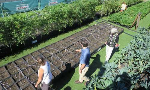 Fenway Farms CP&GC tour