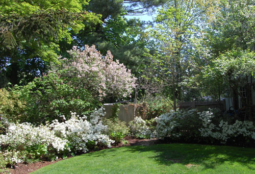 Garden Street Garden Smithsonian Archives of American Gardens
